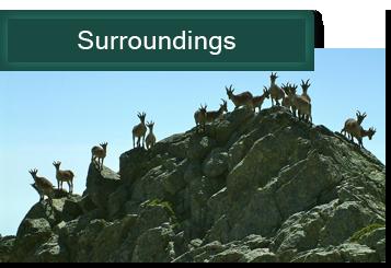 photobook Surroundings